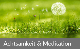 Achtsamkeit & Meditation